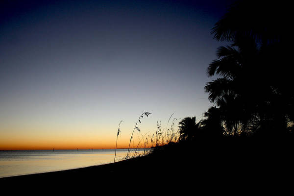 Photograph - Key West Sunset by Heather Applegate