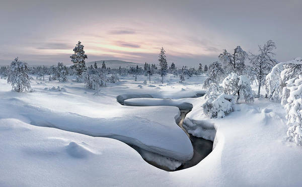 Plain Wall Art - Photograph - Kiilopa?a? - Lapland by Christian Schweiger