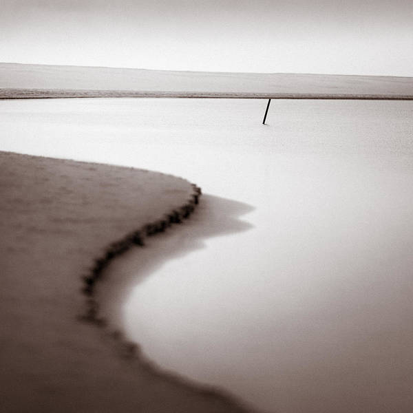 Shutter Photograph - Kijkduin Beach by Dave Bowman