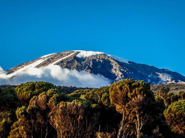 Photograph - Kilimanjaro by Jim DeLillo