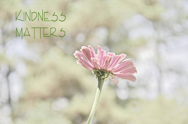 Photograph - Kindness Matters by Jeanne May