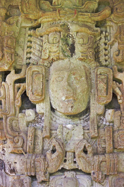 Stone Carving Wall Art - Photograph - King 15, Stele M, Mayan Ruins In Copan by Keren Su