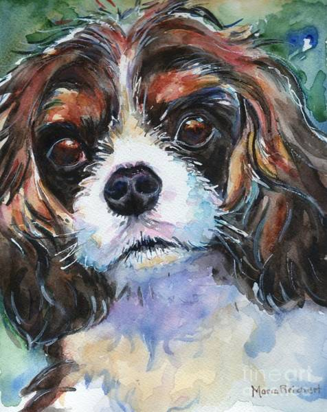 King Charles Spaniel Painting - King Charles Spaniel  by Maria's Watercolor