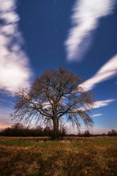 Moonscape Photograph - King Of The Night by Davorin Mance