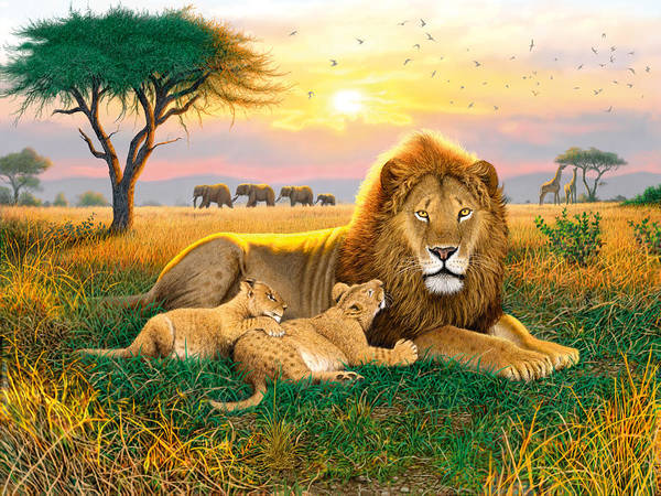 Laying Photograph - Kings Of The Serengeti by MGL Meiklejohn Graphics Licensing