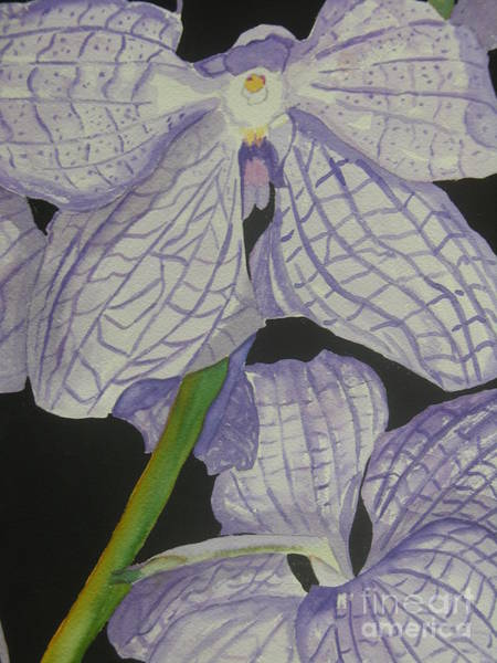 Painting - King's Orchids by Peggy Dickerson