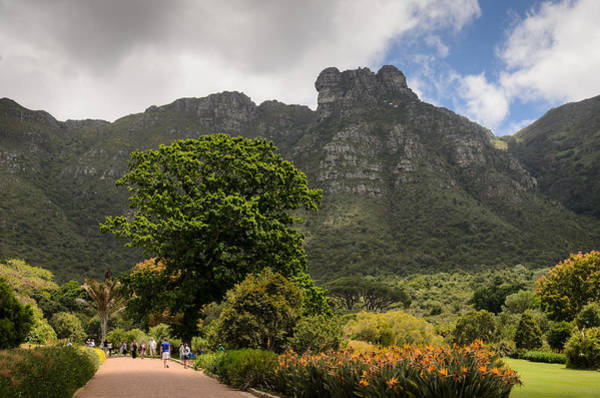 Photograph - Kirstenbosch by Paul Indigo