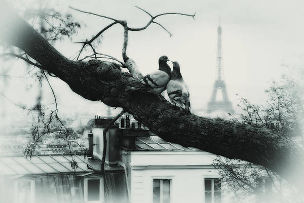 Allegory Photograph - kiss you in Paris by Joachim G Pinkawa