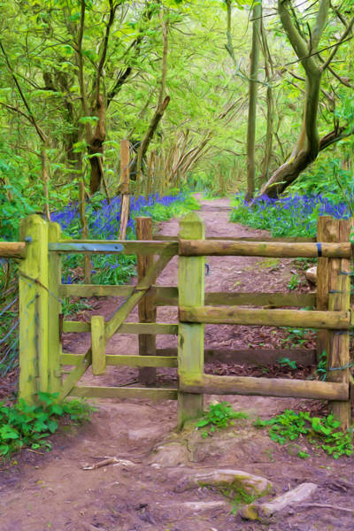 Woodland Park Mixed Media - Kissing Gate Painting. by Roy Pedersen