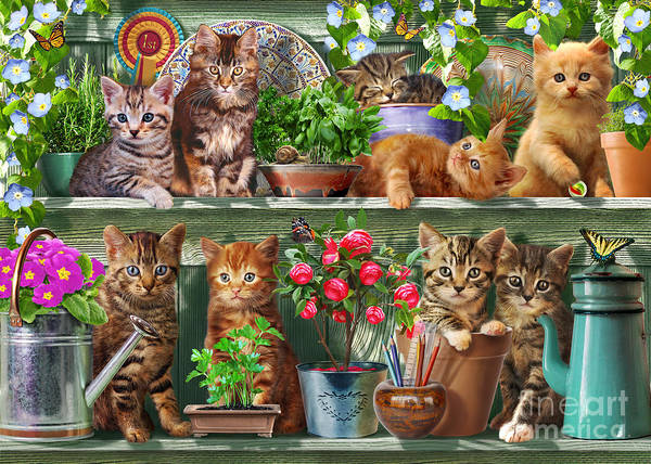 Water Plant Digital Art - Kitchen Cats by MGL Meiklejohn Graphics Licensing