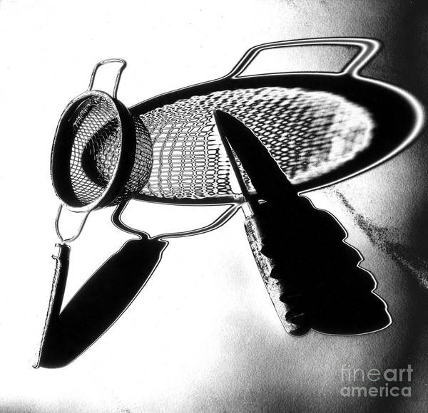 Solarized Photograph - Kitchen Utensils by Garry McMichael