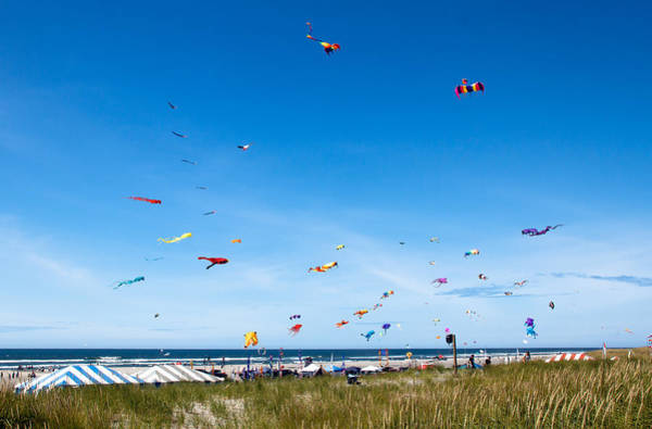 Kite Festival Wall Art - Photograph - Kite Festial by Robert Bales