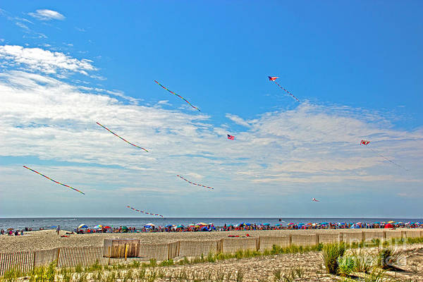Flying A Kite Photograph - Kites Flying Over The Sand by Tom Gari Gallery-Three-Photography