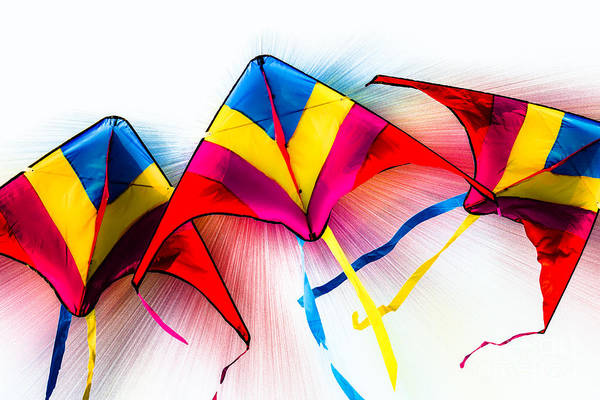 Photograph - Kites by Michael Arend