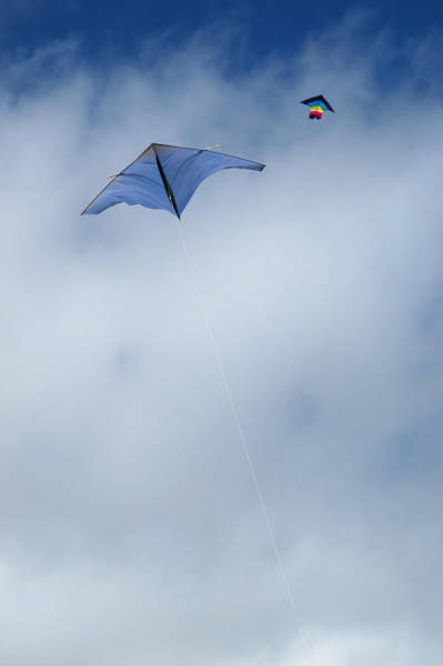 Photograph - Kites On High by Rob Huntley