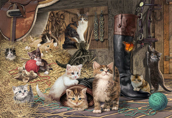 Wall Art - Photograph - Kitten Capers by MGL Meiklejohn Graphics Licensing