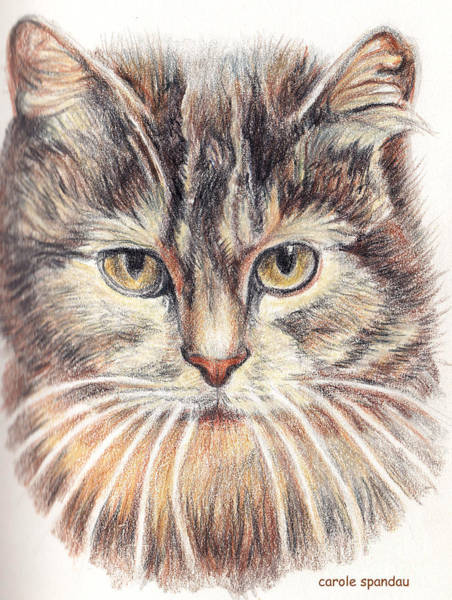 Painting - Kitty Kat Iphone Cases Smart Phones Cells And Mobile Cases Carole Spandau Cbs Art 341 by Carole Spandau