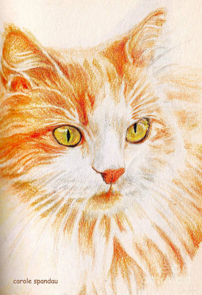 Painting - Kitty Kat Iphone Cases Smart Phones Cells And Mobile Cases Carole Spandau Cbs Art 344 by Carole Spandau