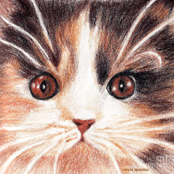 Painting - Kitty Kat Iphone Cases Smart Phones Cells And Mobile Phone Cases Carole Spandau 318 by Carole Spandau