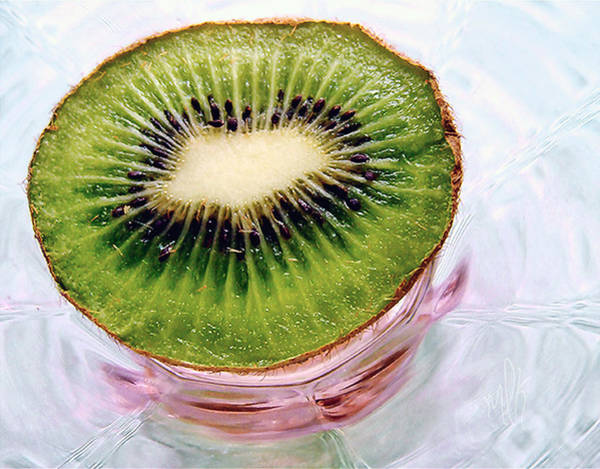 Kiwifruit Photograph - Kiwi Fruit On A Pink And Blue Glass Plate by Louise Kumpf
