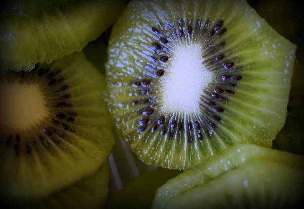 Kiwifruit Photograph - Kiwi by Laurie Perry