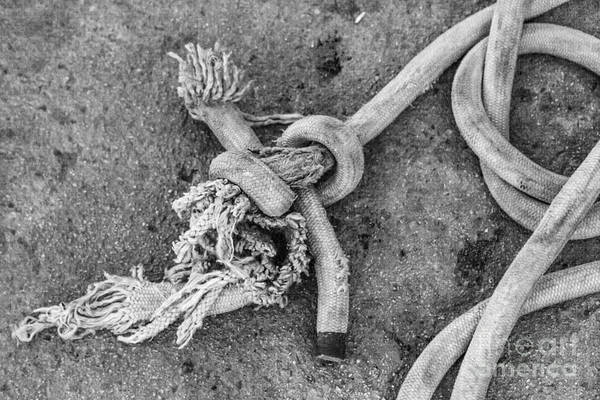 Wall Art - Photograph - Knot by Eugenio Moya