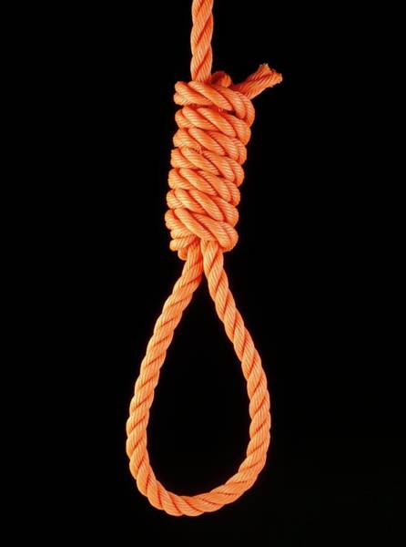 Knot Photograph - Knots: A Hangman's Noose by Adam Hart-davis/science Photo Library