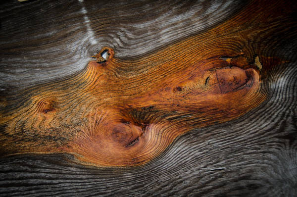 Photograph - Knotty Plank by Ron White