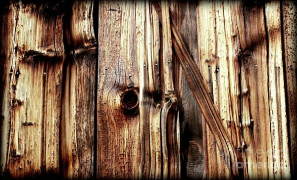 Wood Siding Wall Art - Photograph - Knotty Wood Grain by Janine Riley