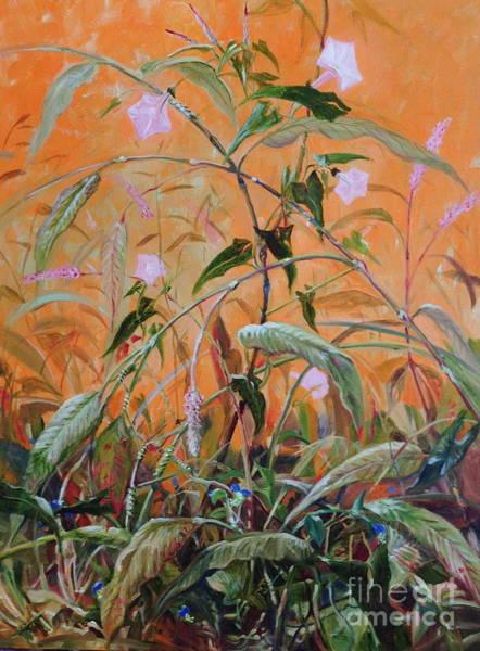 Dayflower Painting - Knotweed Bindweed Botanical by Amie Ziner