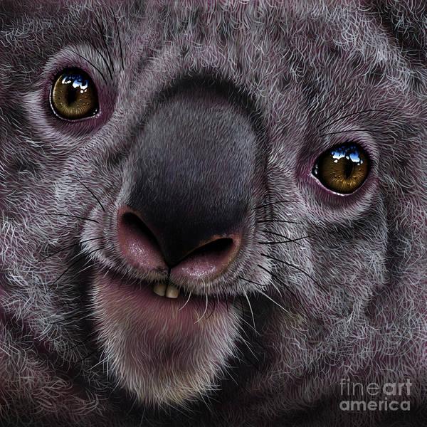 Australian Wildlife Wall Art - Painting - Koala by Jurek Zamoyski