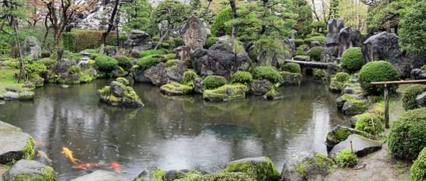 Koi Pond Photograph - Koi Fish In A Pond At Hirosaki Park by Panoramic Images