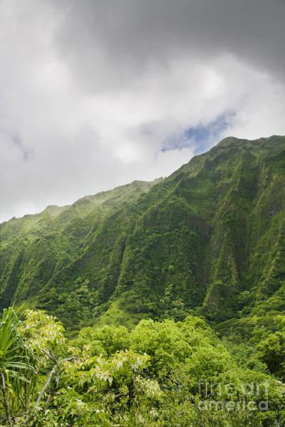 Photograph - Ko'olau Ridge by Charmian Vistaunet