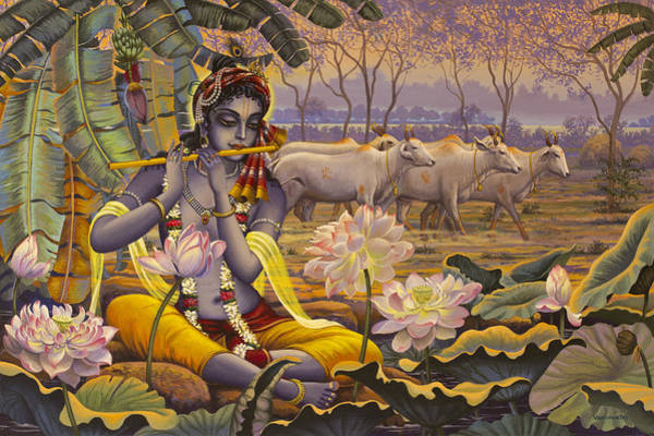 Wall Art - Painting - Krishna. Evening Flute by Vrindavan Das