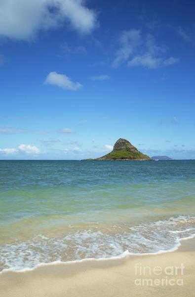 Photograph - Kualoa Beach Park And Mokoli'i Island by Charmian Vistaunet