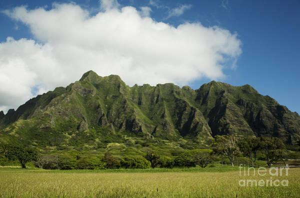 Photograph - Kualoa Ridge by Charmian Vistaunet