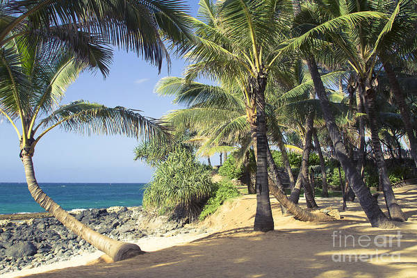 Photograph - Kuau Cove Beach Paia Maui North Shore Hawaii by Sharon Mau