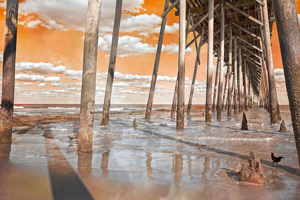 Coastal Bird Photograph - Kure Beach Pier by Betsy Knapp