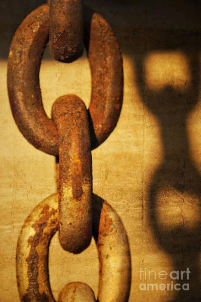 Chain Link Photograph - L I N K S by Charles Dobbs