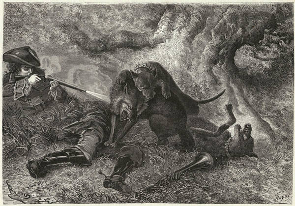 Wall Art - Drawing - La Bete Du Gevaudan  The Beast With One by Mary Evans Picture Library