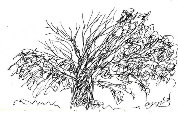 Drawing - La Cizana In Torremolinos by Chani Demuijlder