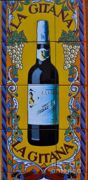 Gitana Wall Art - Photograph - La Gitana by Mary Machare