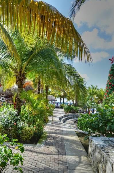 Photograph - La Isla Bonita by Bill Hamilton