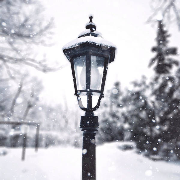 Photograph - La Lumiere D'hiver by Natasha Marco