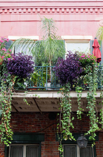 Wall Art - Photograph - La, New Orleans, French Quarter by Jamie and Judy Wild