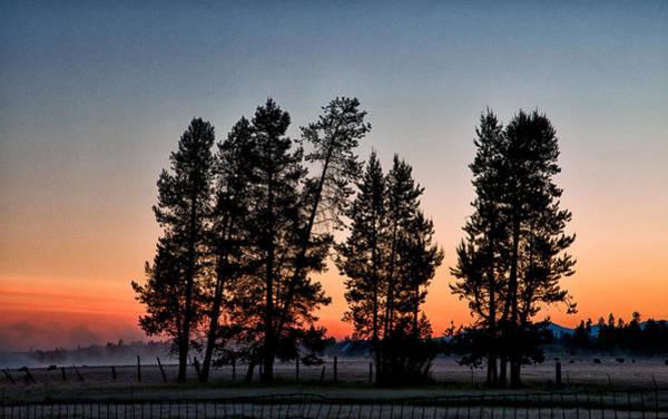 Orange Cat Photograph - La Pine Sunrise by Cat Connor