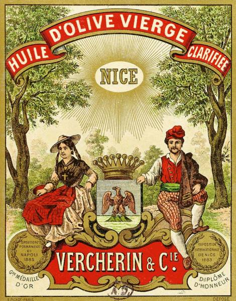 Oil Drawing - Label For Vercherin Extra Virgin Olive Oil by French School