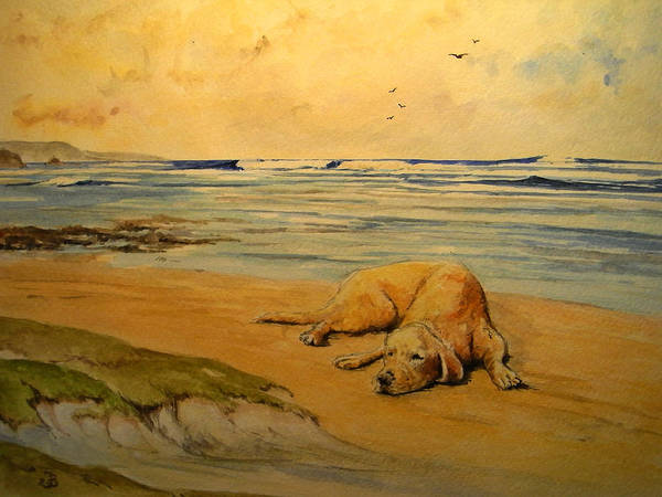 Retriever Wall Art - Painting - Labrador Retriever In The Beach by Juan  Bosco