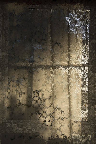 Lace Curtain 1 Art Print