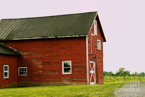 Photograph - Lacey Magruder Barn by William Norton